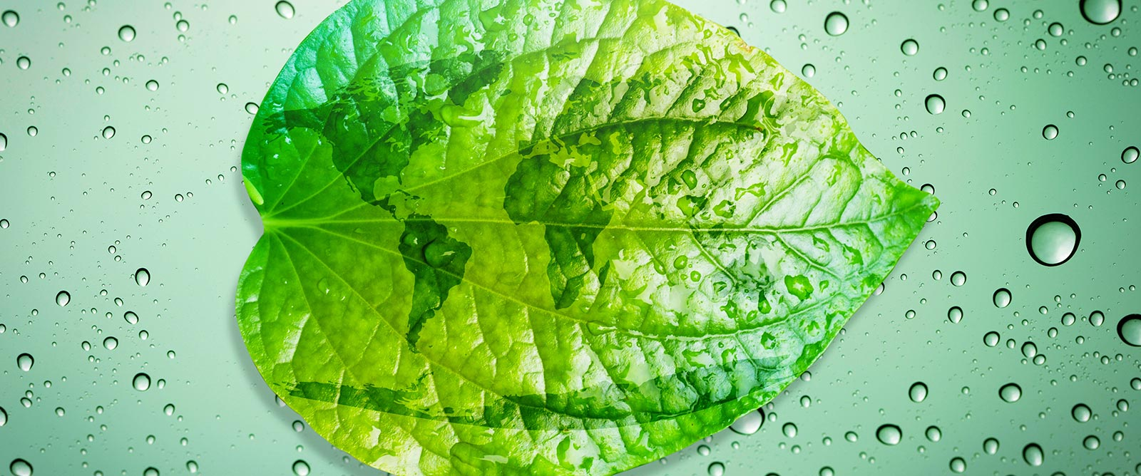 AGC Nederland - Duurzaamheidsverslag 2018